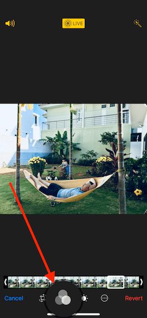 Hình 06: Thêm bộ lọc cho ảnh động