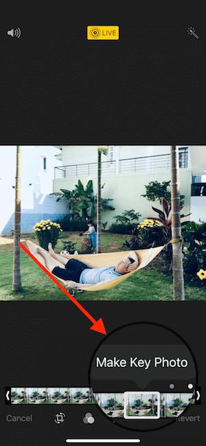 Hình 07: Chọn ảnh đại diện cho ảnh động live photo